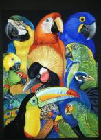 Picture of Exotic birds