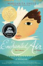 Enchanted Air bookjacket