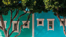 Colorful row houses with trees