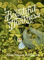 Beautiful Darkness book jacket