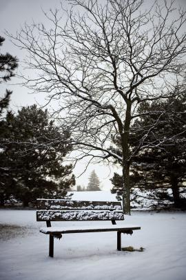 Photo of a bench in a park, covered in snow [by Benson Kua, via Wikimedia Commons]