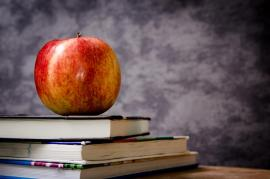 a red apple on top of three textbooks on a desk with grey background