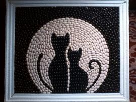 Bean cats