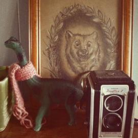 Photo of curated clutter: plastic dinosaur, drawing, vintage camera
