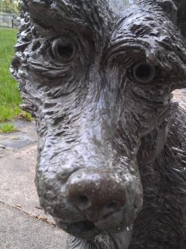 Ridby the dog sculpture - photo by Beverly Stafford, Multnomah County Library