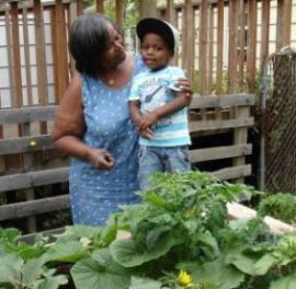family garden - growing garden
