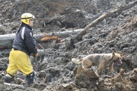 Canine Recovery Team, FEMA/Marty Bahamonde, April 2014, Snohomish County, WA