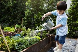 Child using a watering can to water garden.