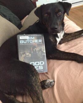 dog and jim butcher book