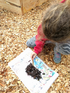 Child explores worms